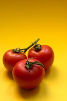 Free Tomato - Copyspace Stock Image - 588241