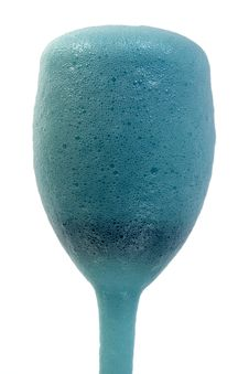 Free Blue Foam In A Glass Stock Images - 589254