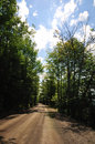 Free Leafy Road - Vertical Stock Images - 5801474