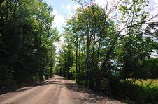 Free Leafy Road - Horizontal Stock Image - 5801461