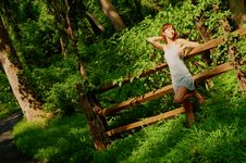 Free Pretty Girl In Woods Royalty Free Stock Photography - 5802067