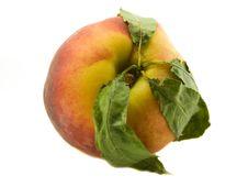 Free Peach Royalty Free Stock Image - 5803986