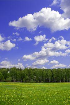 Free Spring Landscape Royalty Free Stock Image - 5804106