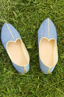 Free Indian Shoes Royalty Free Stock Images - 5804749