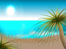 Free Beach Royalty Free Stock Photography - 5806347