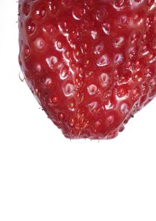 Free Strawberry Macro Stock Images - 5806884