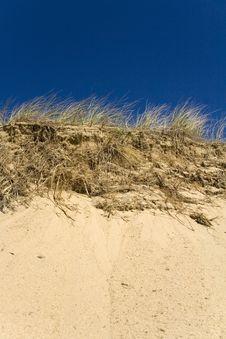Free Grassy Sand Dunes Royalty Free Stock Image - 5807366