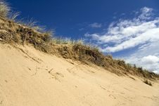 Free Grassy Sand Dunes Royalty Free Stock Images - 5807389