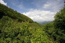 Free Blue Ridge Parkway View Royalty Free Stock Photo - 5807635