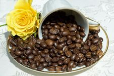 Free Coffee Beans In White Cup Stock Photography - 5807702