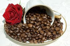 Free Coffee Beans In White Cup Stock Images - 5807704