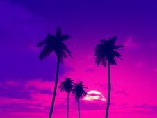 Free Beautiful Sunset Royalty Free Stock Image - 5808266