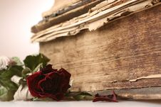 Free Image Of Old Books From 16th Century Royalty Free Stock Photos - 5808828