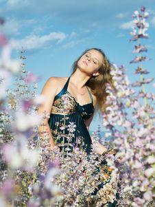 Free Girl At Sage Field Royalty Free Stock Photos - 5809878