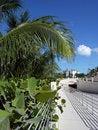 Free Paradise Island Tunnel Royalty Free Stock Photo - 5818295
