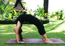 Free Yoga Royalty Free Stock Photo - 5813095