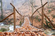 Free Wooden Bridge In Forest Stock Image - 5813341