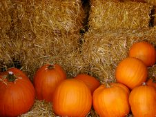 Free Pumpkins And Hay Stock Photo - 5816160