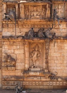 Free Chittorgarh Citadel Ruins In Rajasthan, India Stock Photography - 5816682