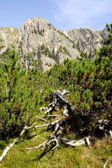 Free Dolomiti Royalty Free Stock Images - 5817019