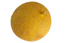 Free Yellow Melon Royalty Free Stock Photo - 5818015