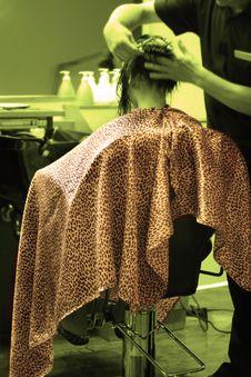 Free Haircut Royalty Free Stock Photography - 5818577
