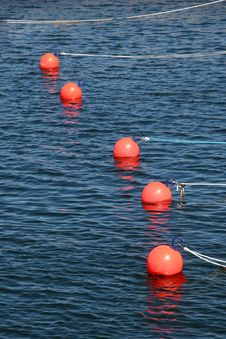 Free Buoys For Small Boats Stock Images - 5818924