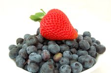 Free Strawberry On Blueberries 2 Stock Images - 5819234