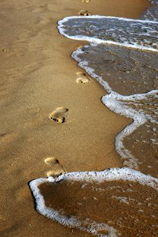 Free Footprints On The Beach Royalty Free Stock Image - 5819386