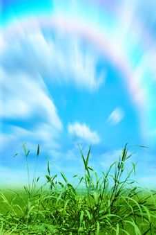 Free Herb And Rainbow Stock Image - 5821341