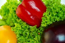 Free Fresh Vegetables Stock Photo - 5821570