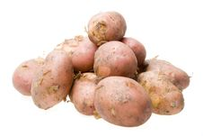 Free Fresh Potato Stock Photos - 5822053