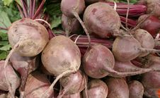 Free Fresh Beets Royalty Free Stock Image - 5822196