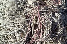 Free Fishing Nets Royalty Free Stock Photo - 5822685