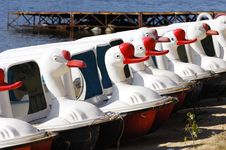 Free Goose Boat Stock Photos - 5823893