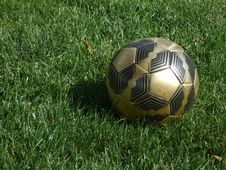Free Soccer Ball Stock Photo - 5824370