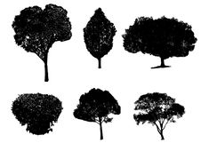 Free Silhouette Trees Isolated Royalty Free Stock Image - 5824576