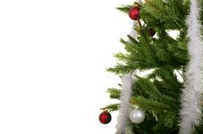 Free Tannenbaum Stock Photos - 5825643