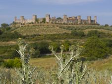 Free Monteriggioni, Tuscany Royalty Free Stock Images - 5825869