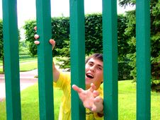 Free Behind A Fence Royalty Free Stock Photo - 5826845