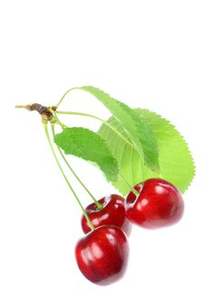 Free Three Cherries With Leafs. Stock Images - 5827244