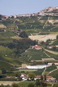 Free Hillside In Piemonte Stock Images - 5827594