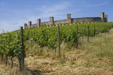 Free Monteriggioni, Tuscany Royalty Free Stock Photography - 5827677
