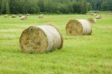 Free Haystack Stock Photos - 5827703