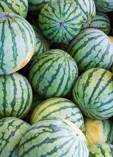 Free Watermelons Stock Images - 5828054