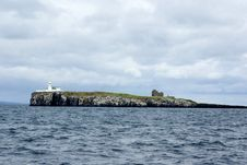 Inner Farne Island Stock Photography