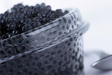 Free Black Caviar Royalty Free Stock Image - 5829116