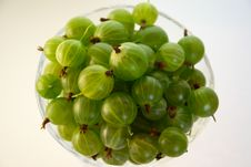 Free Gooseberries Royalty Free Stock Photos - 5829658