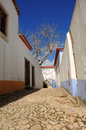 Free Portugal Obidos; A Medieval City Royalty Free Stock Image - 5832806