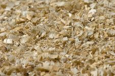 Free Sawdust Royalty Free Stock Images - 5830379